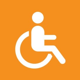 Download Disability Services Handbook