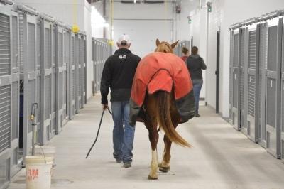 man & horse walking indoors past stalls