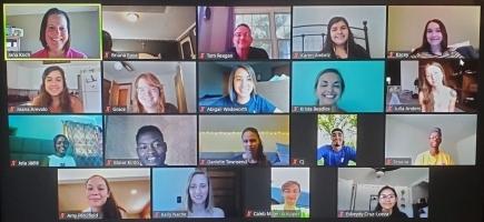 19 people on screen in Zoom meeting